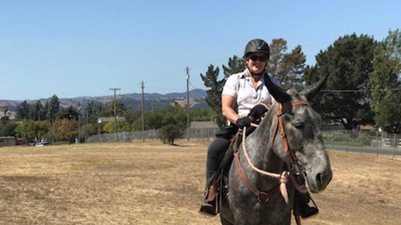 Hero image for Horses